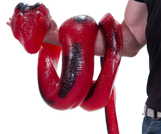 26-Pound Gummy Python - coolthings.us