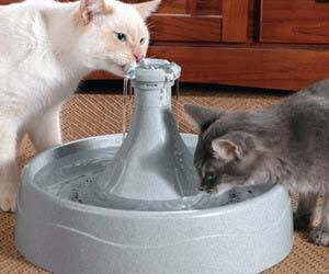 Pet Water Fountain - http://coolthings.us