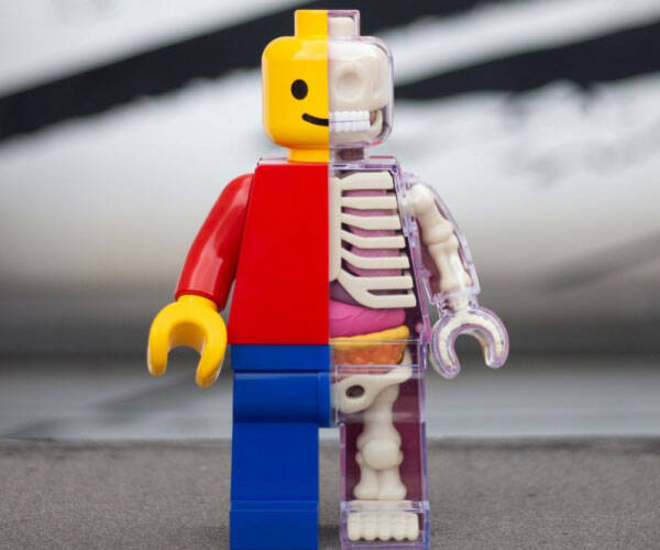 Anatomical LEGO Brick Man - http://coolthings.us