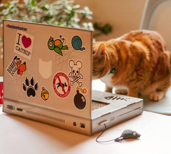 The Cat Scratch Laptop a Toy Laptop for Cats - http://coolthings.us