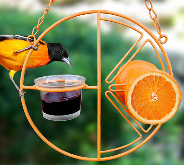 Clementine Oriole Bird Feeder - http://coolthings.us