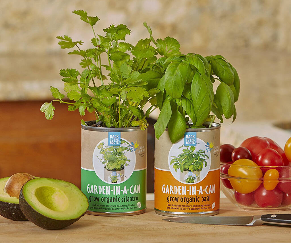 Organic Garden In A Can - http://coolthings.us