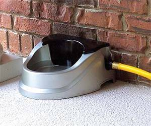 Auto Refilling Dog Bowl - http://coolthings.us