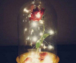 Beauty And The Beast Enchanted Rose - http://coolthings.us