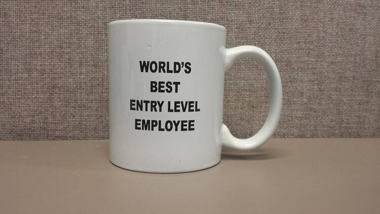 Best Entry Level Employee Mug - http://coolthings.us