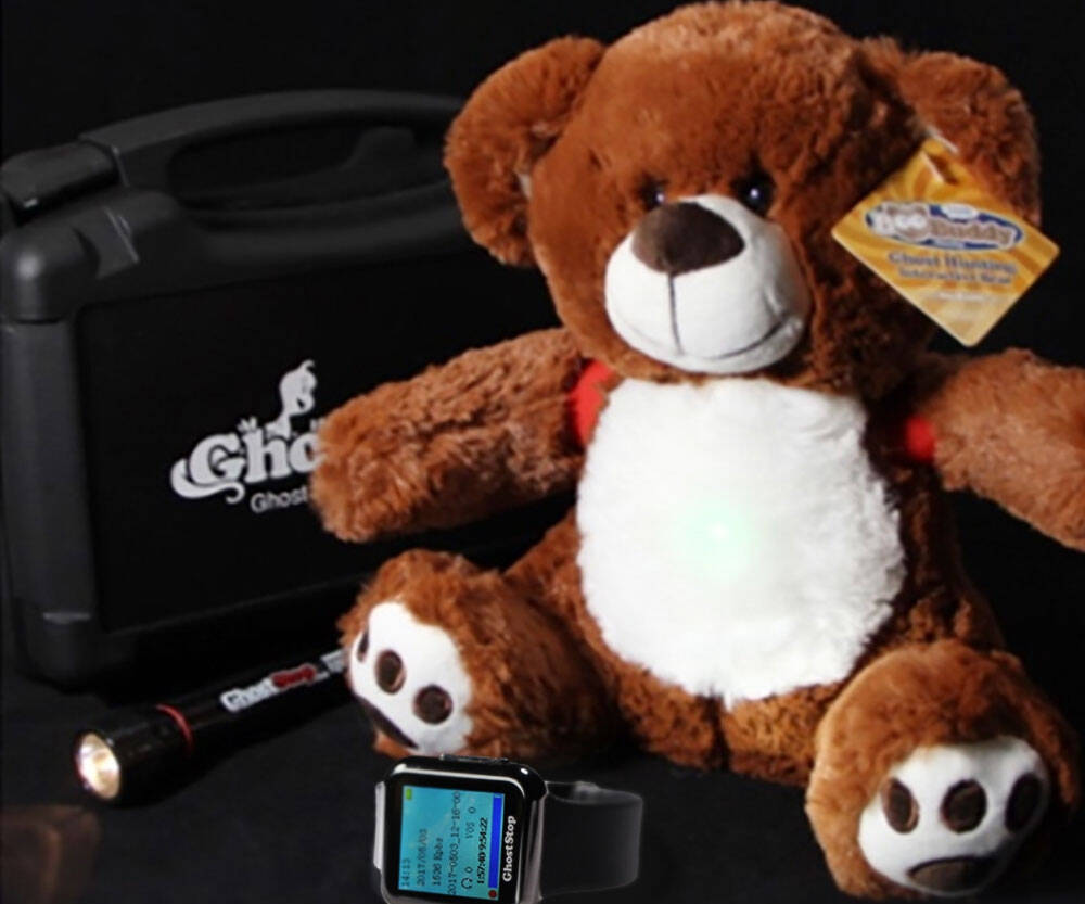 BooBuddy Interactive Ghost Hunting Bear - http://coolthings.us