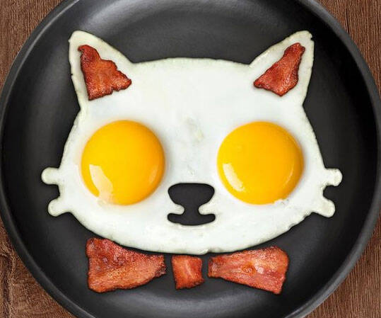 Cat Shaped Egg Mold - http://coolthings.us