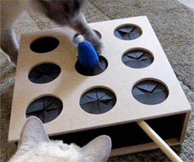 Cat Whac-A-Mole Toy - http://coolthings.us