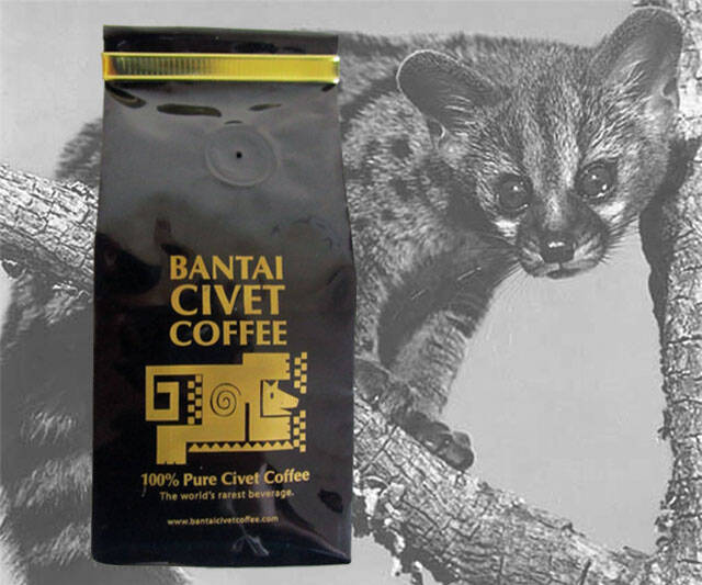 Civet Sh*t Coffee Beans - http://coolthings.us