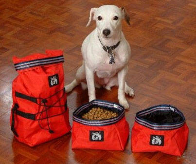 Collapsible Travel Dog Bowls