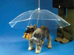 Dog Umbrella - http://coolthings.us