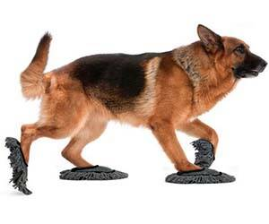 Doggie Floor Dusting Slippers - http://coolthings.us