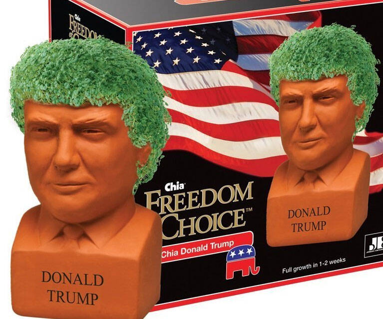 Donald Trump Chia Pet - http://coolthings.us