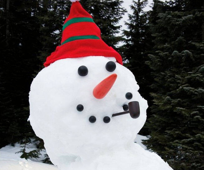 Dress A Snowman Kit - coolthings.us