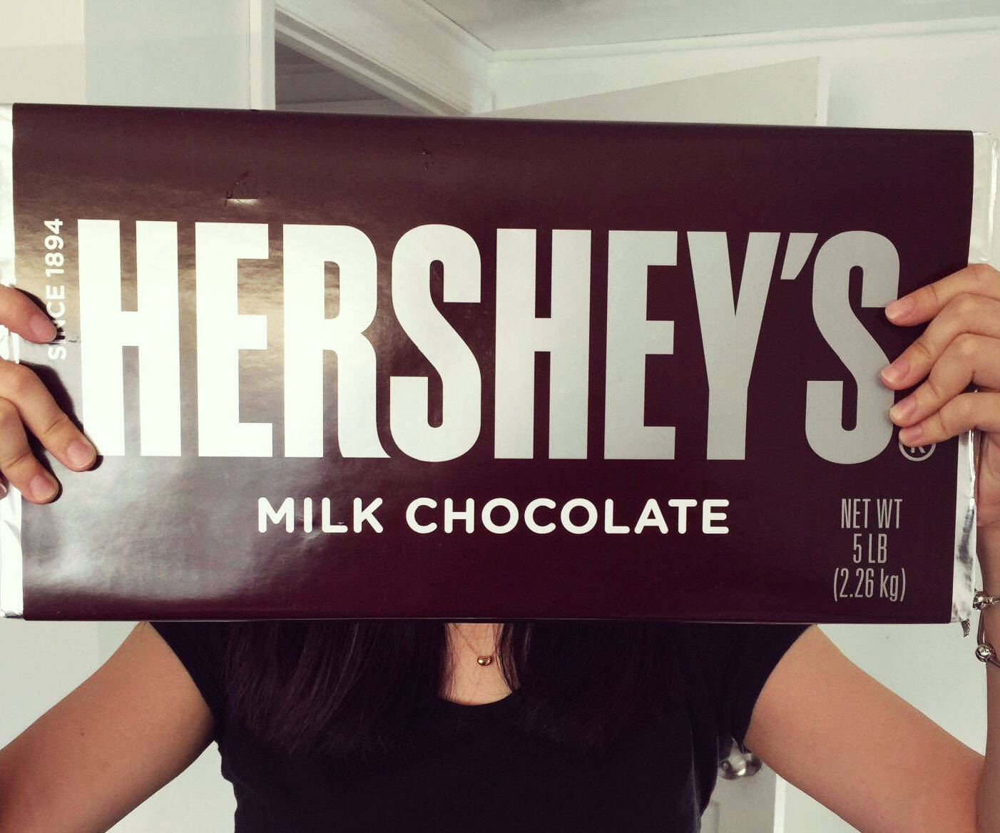 World's Largest Hershey's Bar - http://coolthings.us