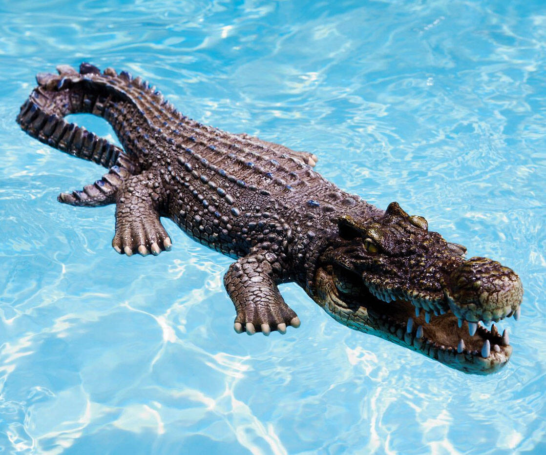 Floating Crocodile Pool Toy - http://coolthings.us