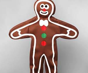 Gingerbread Man Costume - http://coolthings.us