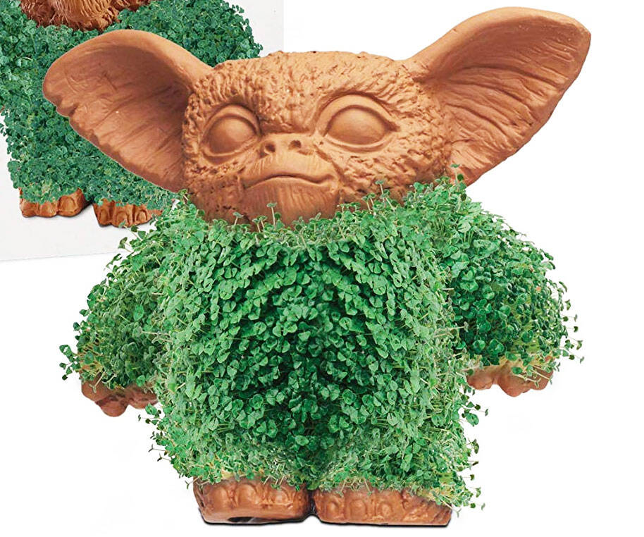 Gremlins Gizmo Chia Pet - http://coolthings.us