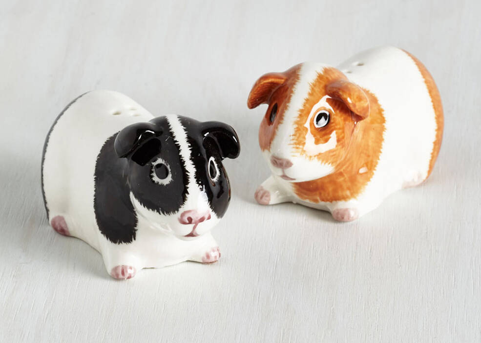 Guinea Pig Salt & Pepper Shakers - coolthings.us