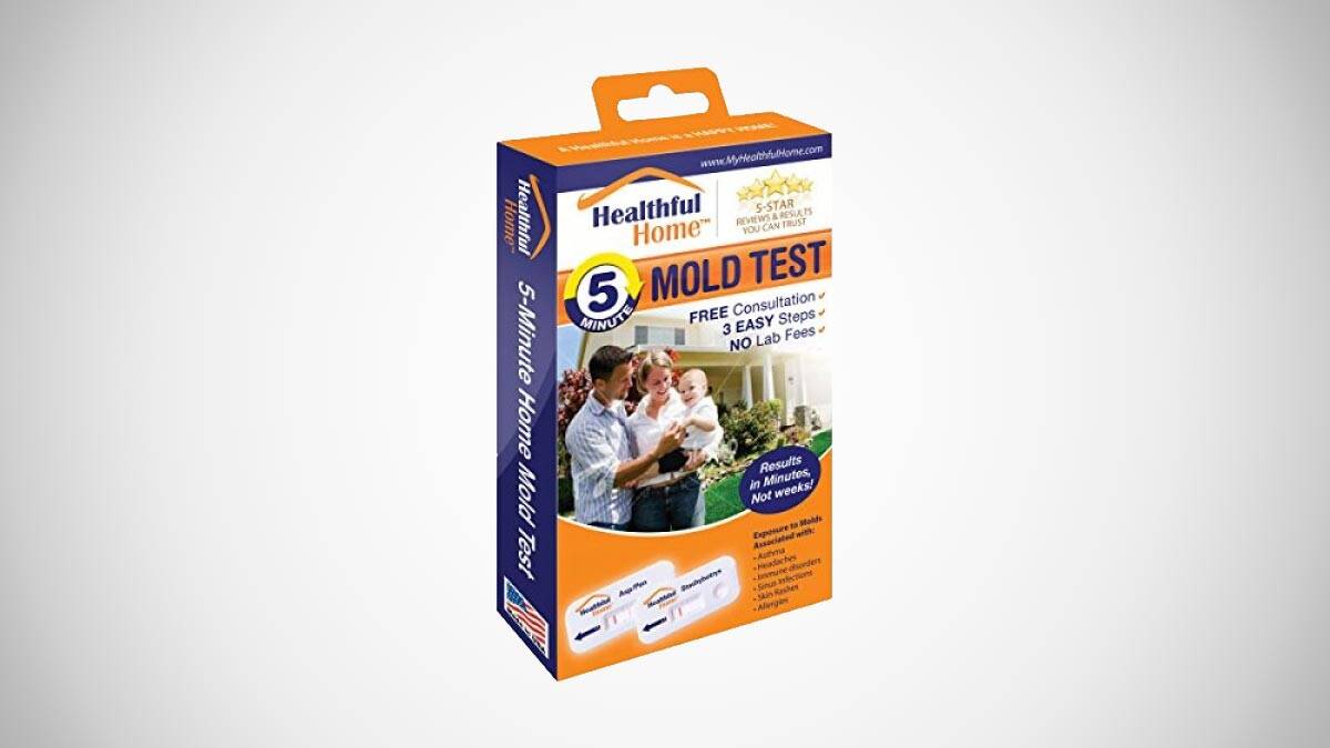 Healthful Home 5-Minute Mold Test Kit - http://coolthings.us