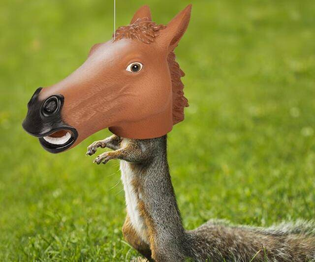 Horse Head Squirrel Feeder - http://coolthings.us