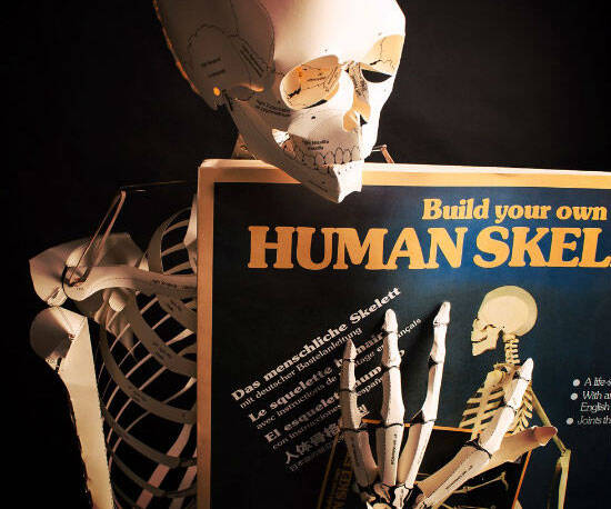 Build Your Own Skeleton Book - http://coolthings.us