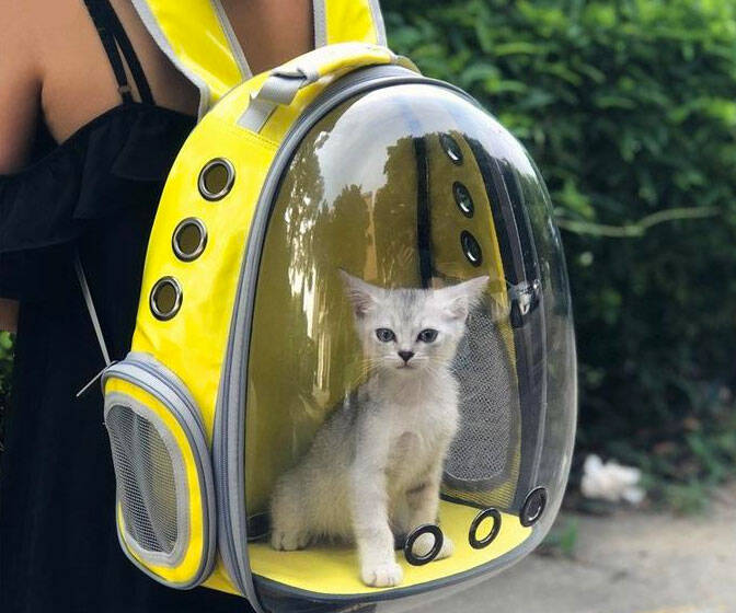 Capsule Pet Travel Backpack - http://coolthings.us