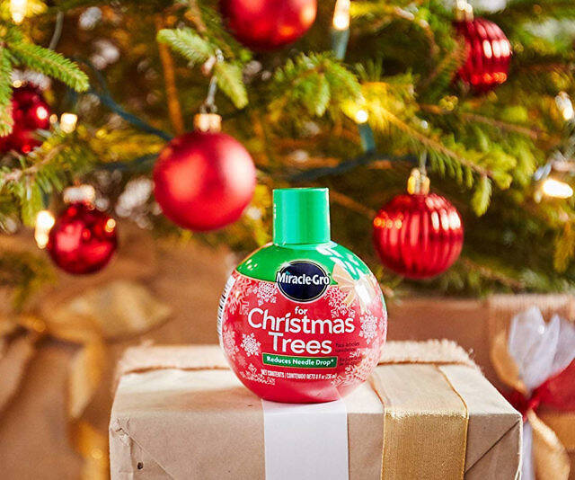 Miracle-Gro For Your Christmas Tree - coolthings.us