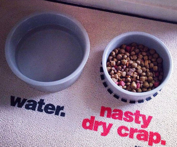 Nasty Dog Food Place Mat - http://coolthings.us