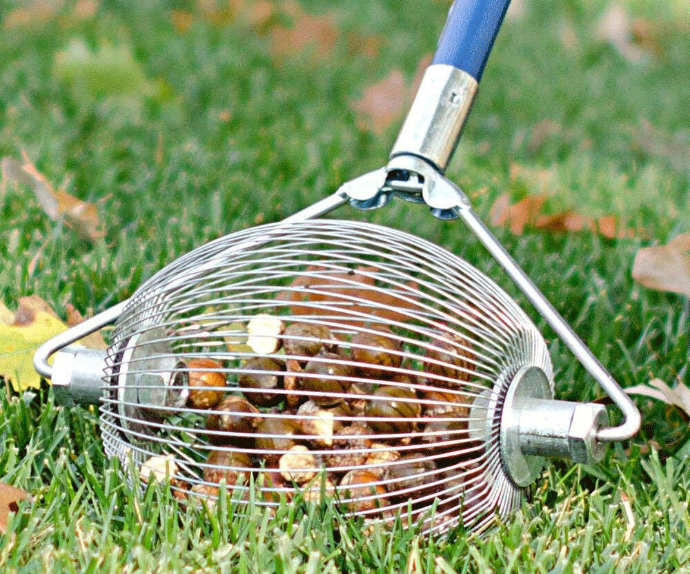 Nut & Golf Ball Collector - http://coolthings.us