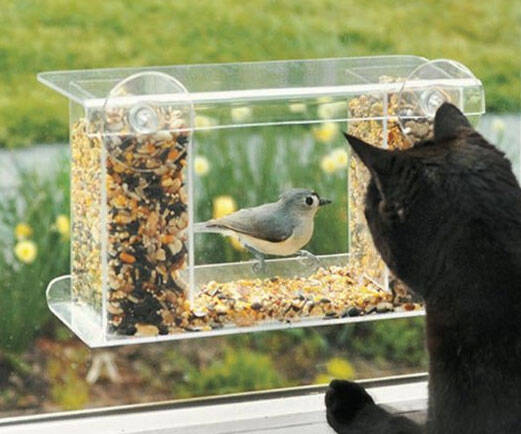 One Way Mirror Bird Feeder - http://coolthings.us
