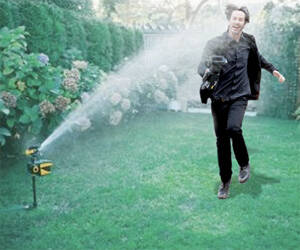 Pest-Deterring Motion-Activated Sprinkler - http://coolthings.us