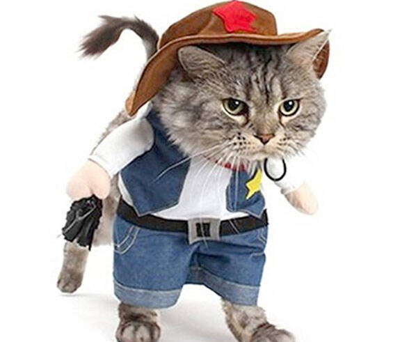Pet Cowboy Costume - http://coolthings.us