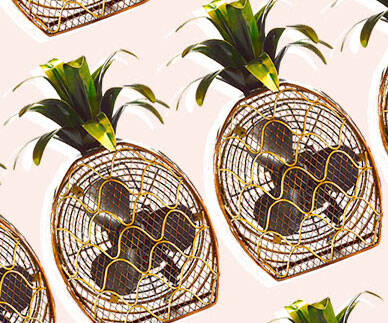 Pineapple Fan - http://coolthings.us