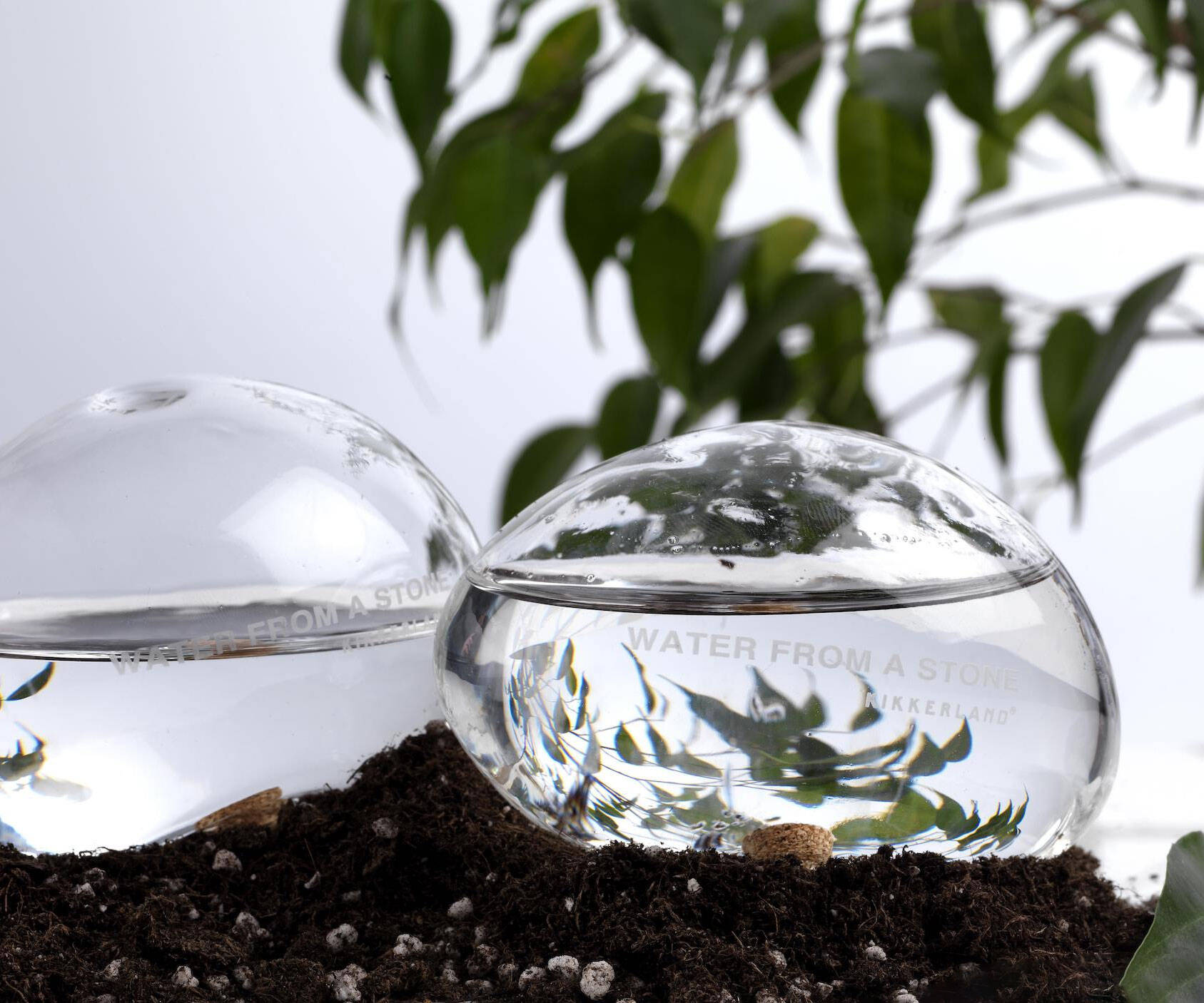 Automatic Self-Watering Plant Globes - http://coolthings.us