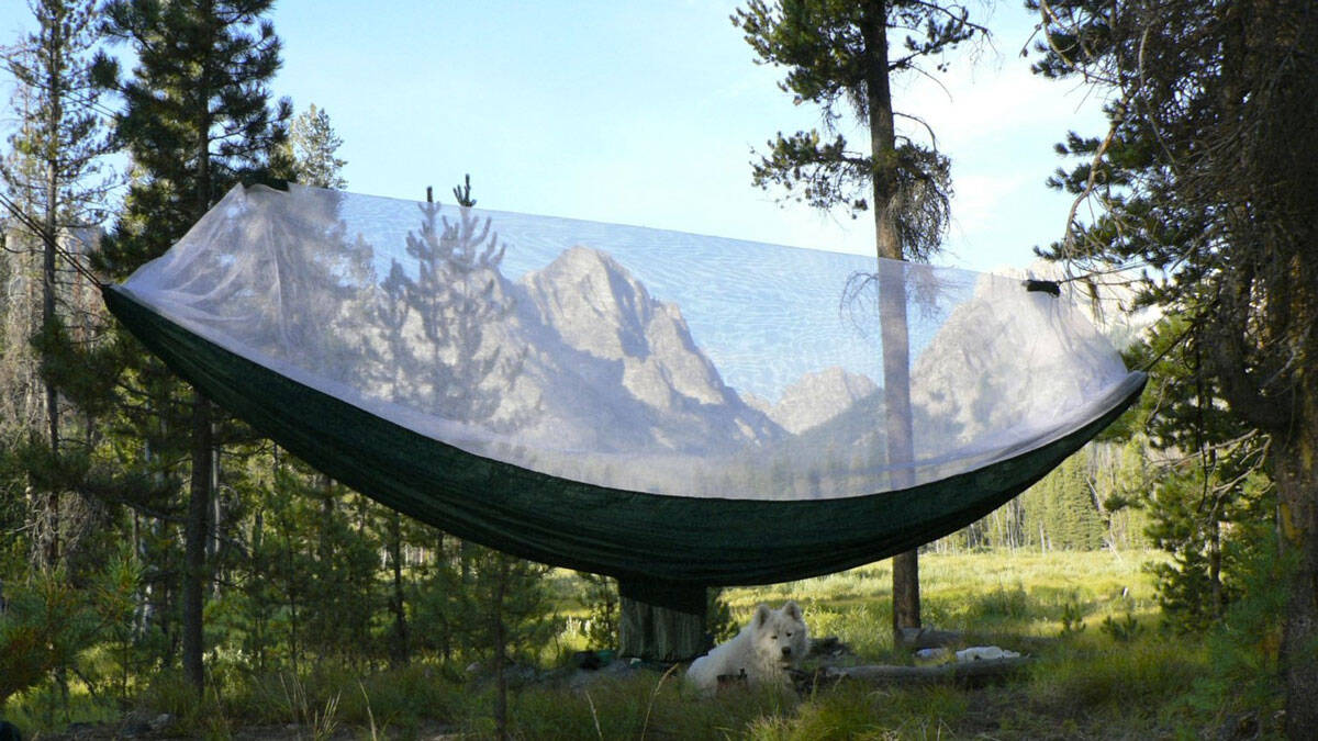 Netted Cocoon Hammock - http://coolthings.us