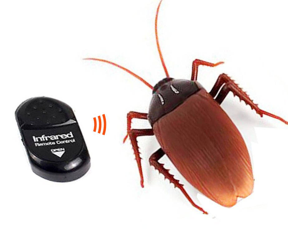 Remote Control Cockroach - http://coolthings.us