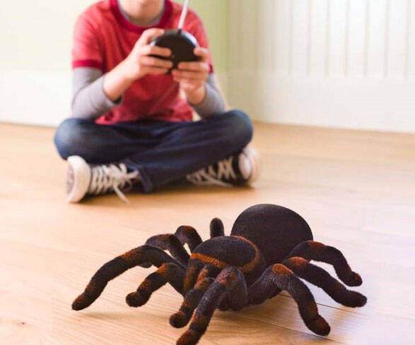 Remote Control Tarantula - http://coolthings.us