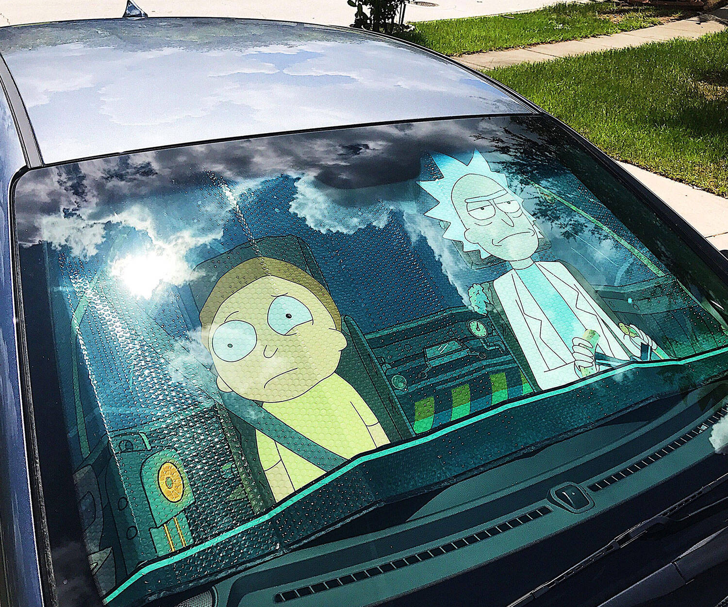 Rick And Morty Windshield Sunshade - http://coolthings.us