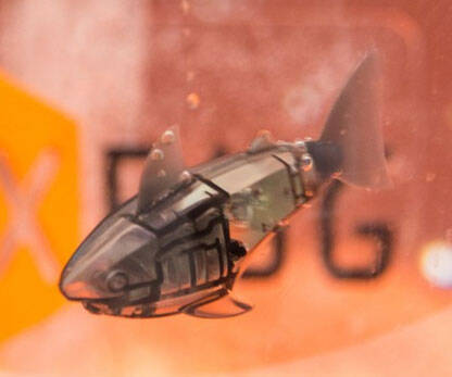 Robotic Pet Fish - http://coolthings.us