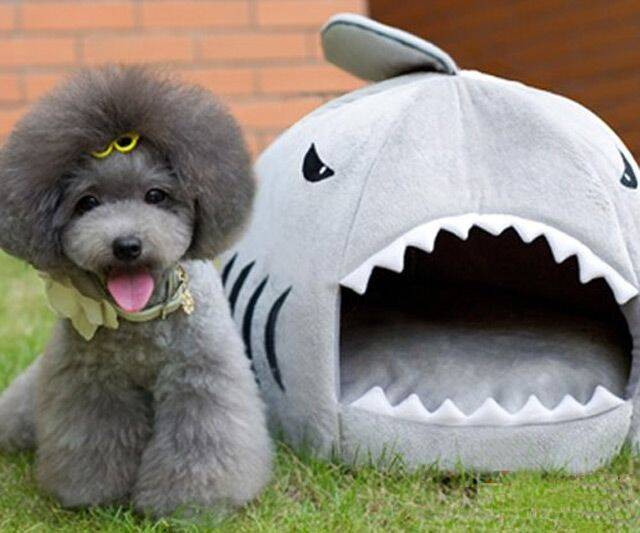 Shark Puppy Bed - http://coolthings.us