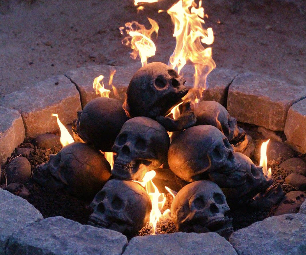 Skull Gas Fireplace Logs - http://coolthings.us
