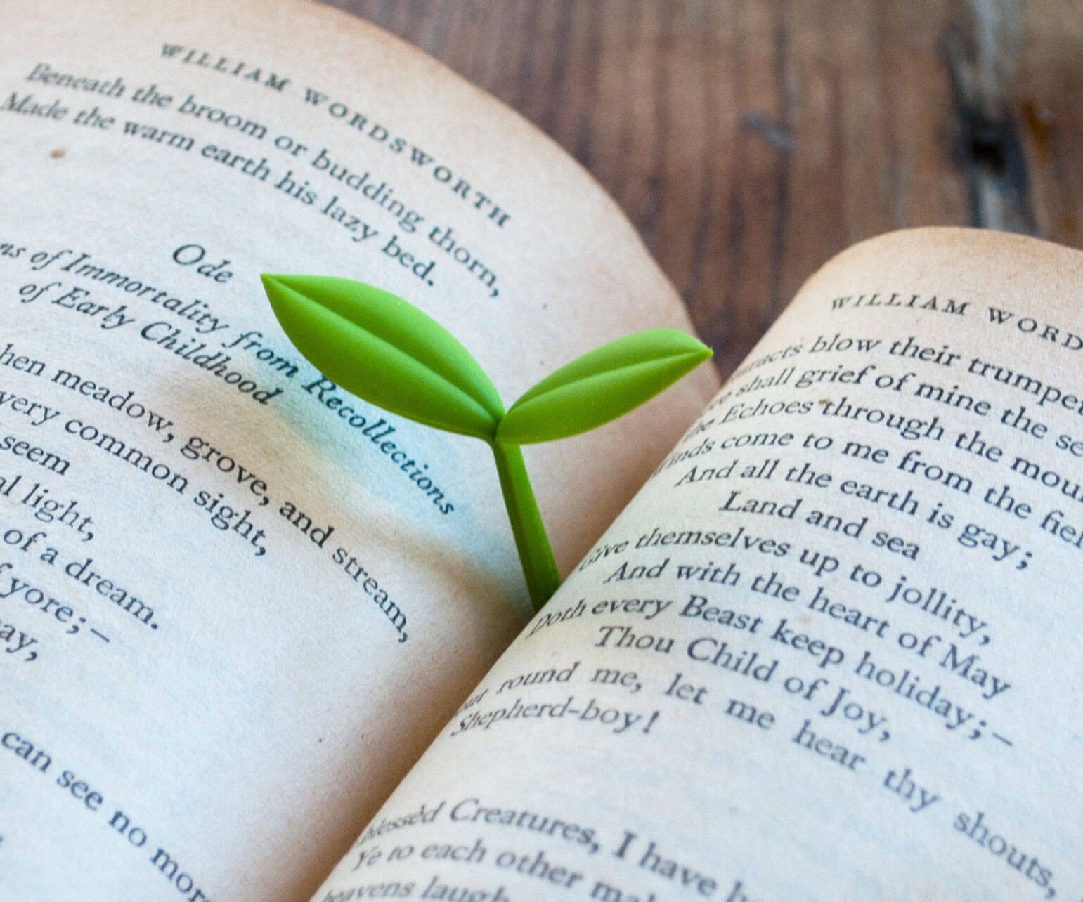 Sprout Bookmark - coolthings.us