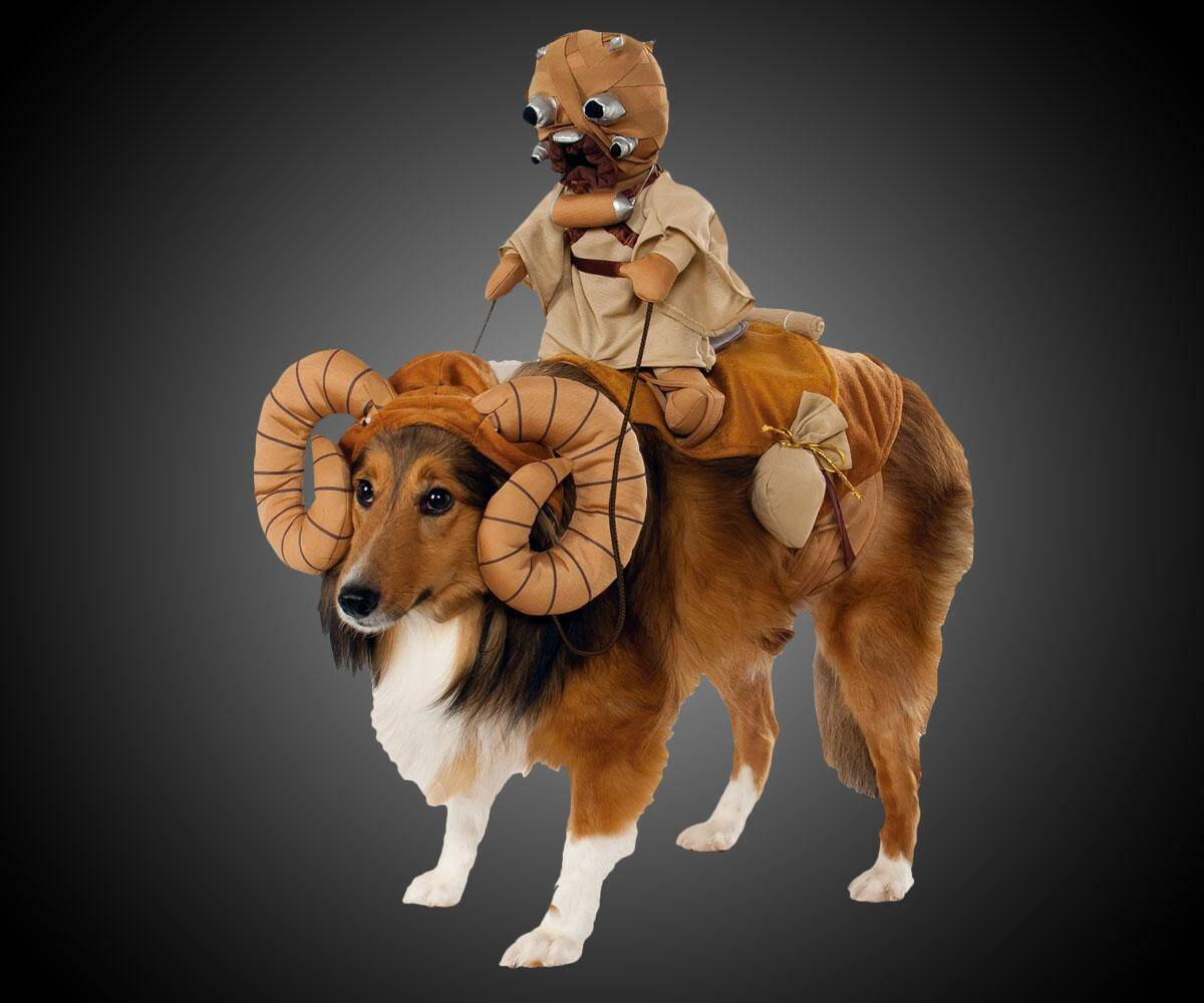 Star Wars Bantha Dog Costume - http://coolthings.us