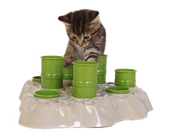 Cat Feeding Game - coolthings.us