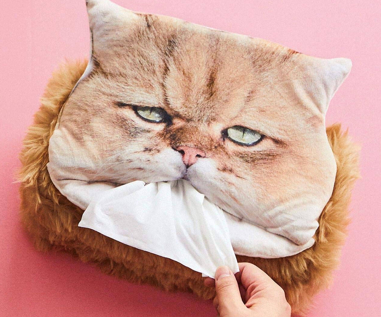 Cat Head Tissue Box - http://coolthings.us