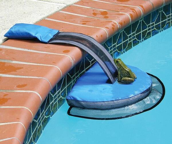 FrogLog Pool Critter Escape Ramp - http://coolthings.us