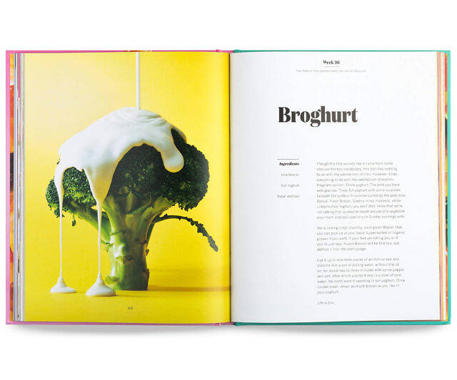 The Pregnancy Cookbook - http://coolthings.us