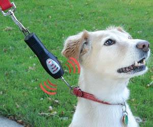 Tug Preventing Dog Trainer - http://coolthings.us
