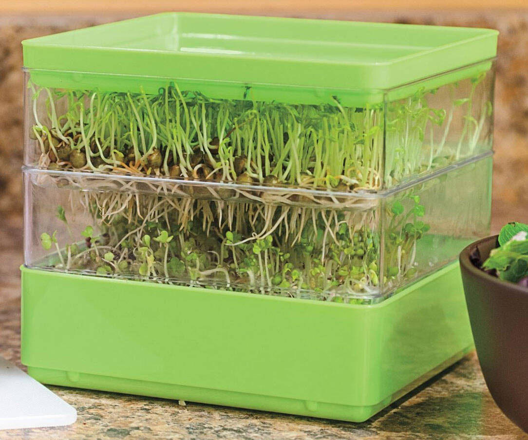 Two-Tiered Seed Sprouter - coolthings.us